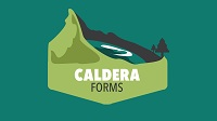 Caldera Forms Coupon Codes