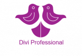 Divi Professional Coupon Codes