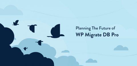 WP Migrate DB Pro Coupon Codes