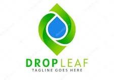 Dropleaf.io coupon codes